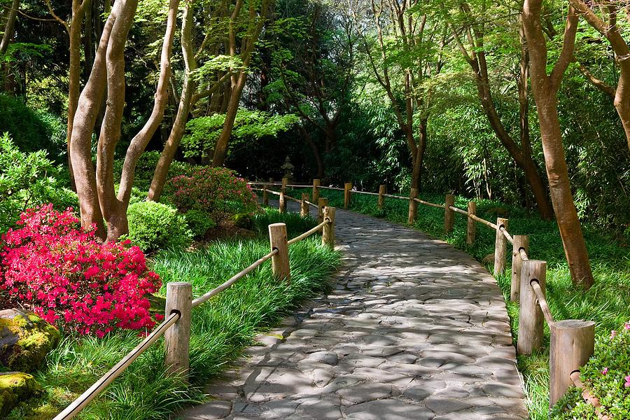 Giardiniere a milano progettazione giardini milano for Arredo giardino milano provincia