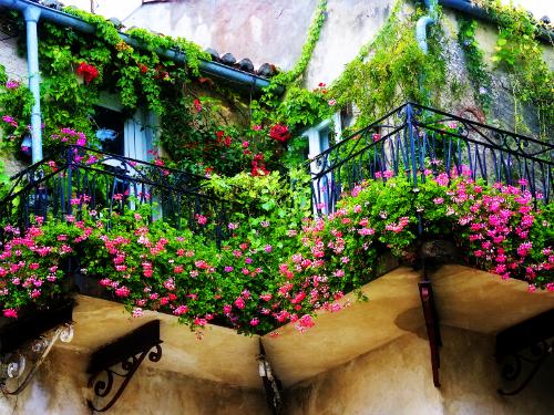 Giardiniere a milano allestimento terrazzi giardinieri for Giardiniere milano